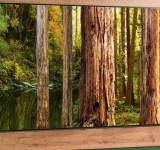 Νέα LG NanoCell τηλεόραση